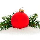 Red Christmas bauble by Elena Elisseeva