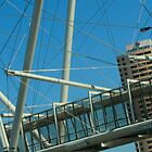 Brisbane Skew-wiff by myraj