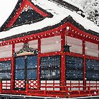 Japan 2014 by Skye Hohmann
