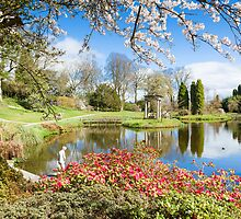 Cholmondeley Castle Gardens - Temple Garden in Spring by Joe Wainwright