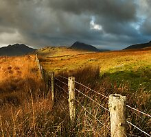 Snowdonia by Dave Guy