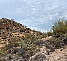 Desert Hills Apache Trail by Lee Craig