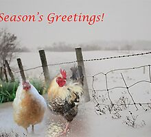 Season's Greetings from my garden! by Maree  Clarkson