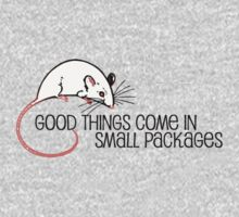 little mouse says good things come in small packages by bristlybits