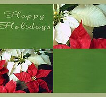 Mixed Color Poinsettias 2 Happy Holidays Q5F1 by Christopher Johnson