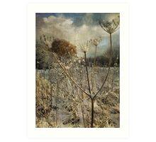 Winter in the Meadow Art Print