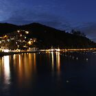 Catalina Casino Dusk by swylie
