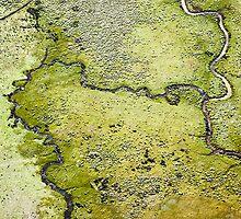 Terra Firma 3/13 by Tim Allen