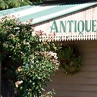 Exeter Antiques by Samantha Bailey