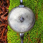 Silver teapot in the forest by Edward Fielding