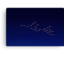 RAAF PC-9 Thunderbird Formation Canvas Print