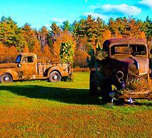 Antique rusted trucks Bradley Maine by Celeste Cota