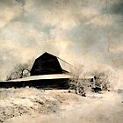 Forgotten Barns...Caldwell, Idaho by trueblvr