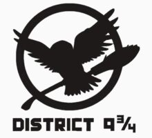 District Nine and Three Quarters by PleaseBuy
