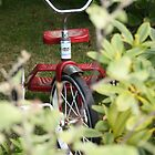 kids vintage bike by LauraBalducci