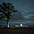 Melrose Tree and Silos by Harvester Light by pablosvista2