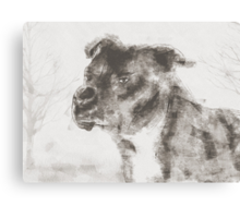 Pitbull Dog Illustration Canvas Print