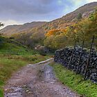 Eskdale,Cumbria by VoluntaryRanger