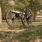 Civil War Historic Cannon at Gettysburg by Dyle Warren