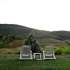 TUSCANY 2009 by Pete Simpson