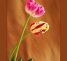 Springtime Impression by didibaev