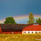 Rainbow over a Red Barn by Michael Brewer