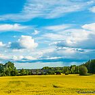 Rural Swedish Landscape by Michael Brewer