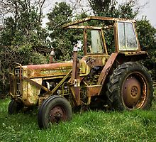 The Old Workhorse by dazb75