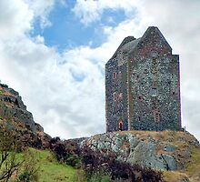 Smailholm Tower by Stuart  Fellowes