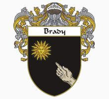 Brady Coat of Arms/Family Crest by William Martin
