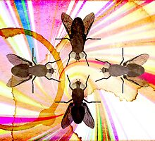 Corporate Fly Party by Jilli Rose
