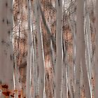 Abstract Aspen III by Nate Welk