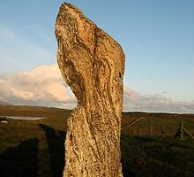 Standing stone by donberry