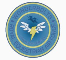Wonderboltz Airforce Insignia  by Jubal Fleetham