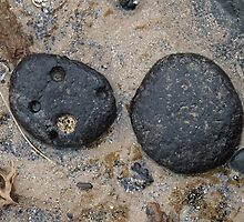 Two Black Pebbles by Yampimon