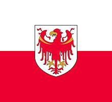 Flag of South Tyrol by abbeyz71