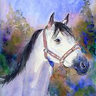 """""""Nina"""" White mare on a crisp morning by COusley622"""