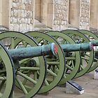 Canons of Tower of London by Sandra Caven