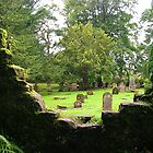 Family Chapel Graveyard, Scone Palace by lezvee
