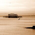 Skeleton Pier by mikebov