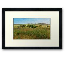 Burra landscape Framed Print
