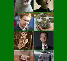 Sherlock Spirit Animals by GStilinski24