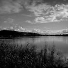 The Mighty Clarence in b&w by myraj
