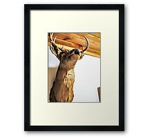 El Dorado the Deer Framed Print