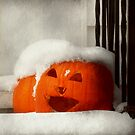 Halloween - Winter - I'm cold by Mike  Savad