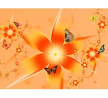 Garden of Butterflies Photographic Print