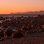 Kapiti Island dawn by Barry Culling