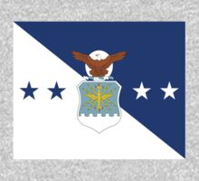 US Airforce Flag by cadellin