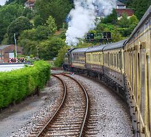 Paignton to Dartmouth Railway by Chris Day