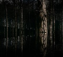 Woodland - 1 by maxblack